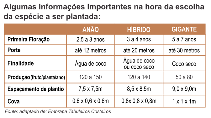 comparativo entre variedades tipos de coqueiros