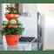 vaso mini horta vertical verde vida