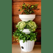 mini horta branca verde vida detalhe agromania
