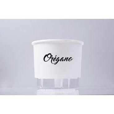 linha gourmet branco vaso auto irrigavel oregano