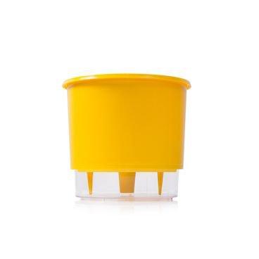 vaso auto irrigavel raiz amarelo