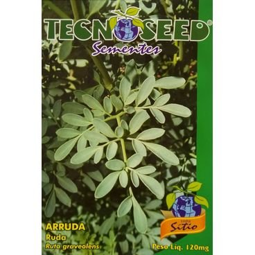 semente arruda tecnoseed