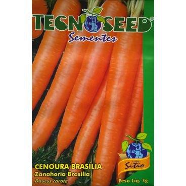 semente cenoura brasilia tecnoseed