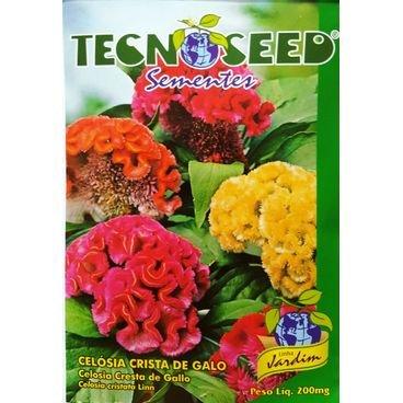 semente flor celosia crista de galo tecnoseed