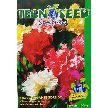 semente flor cravo gigante sortido tecnoseed