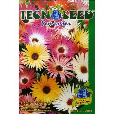 semente flor ficoide sortido tecnoseed