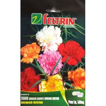 semente flor cravo sortida feltrin