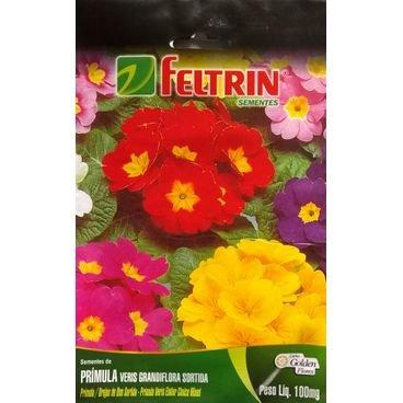 semente flor primula veris sortida feltrin