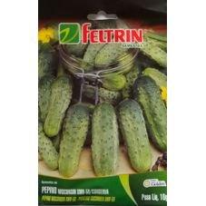 semente pepino conserva wisconsin feltrin