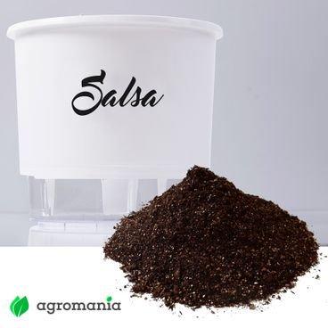 vaso autoirrigavel raiz gourmet salsa substrato