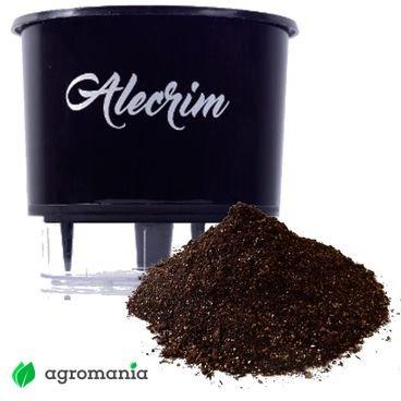 vaso autoirrigavel raiz gourmet preto alecrim substrato