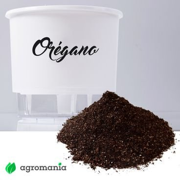 vaso autoirrigavel raiz gourmet oregano substrato