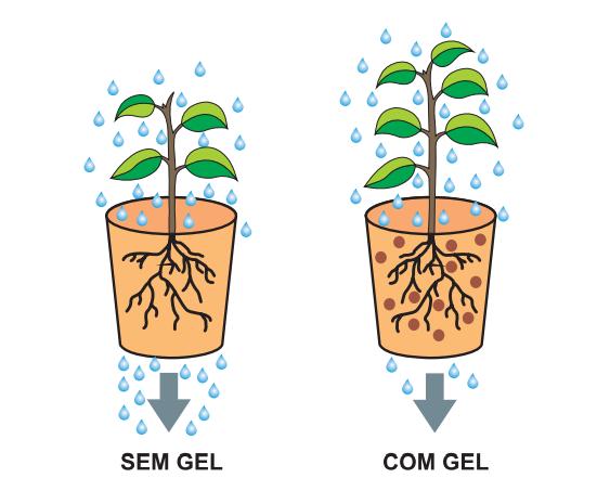 gel plantio comparativo
