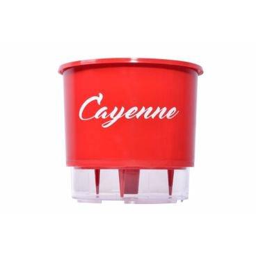 vaso autoirrigavel raiz pimenta vermelho cayenne