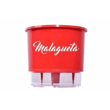 vaso autoirrigavel raiz pimenta vermelho malagueta