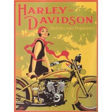 placa pvc harley davidson 02