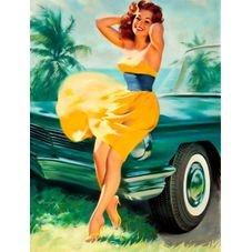 placa pvc pin up car