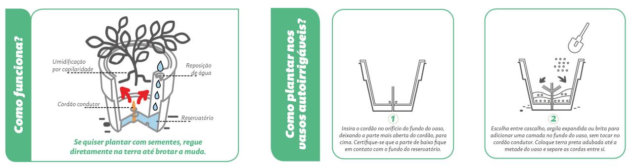 vaso autorrigavel sistema de irrigacao como funciona 8 agromania