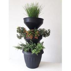 mini horta preta horta verde vida com plantas