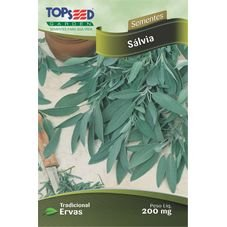 semente salvia tempero topseed