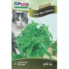 semente ervas de gatos topssed