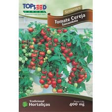 semente tomate cereja samambaia topseed