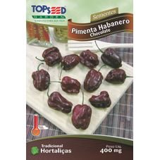 semente habanero chocolate topseed