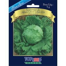 semente alaface americana topseed