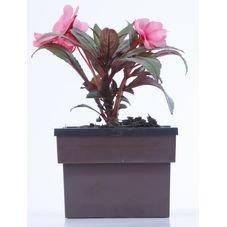 vaso autoirrigavel retangular marrom flor