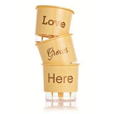 vaso autoirrigavel wishes love pessego vertical
