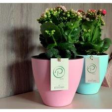 vasos autoirrigaveis plantie rosa azul