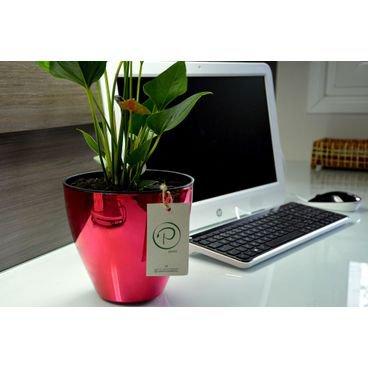 vaso autoirrigavel plantie metalizado rosa
