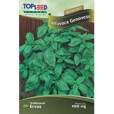 alfavaca genovese topseed