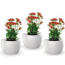 kit botanica branco 3 vasos