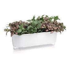 jardineira autoirrigavel raiz branco plantas