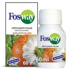 forth fosway 60ml