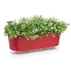 jardineira autoirrigavel raiz vermelho plantas