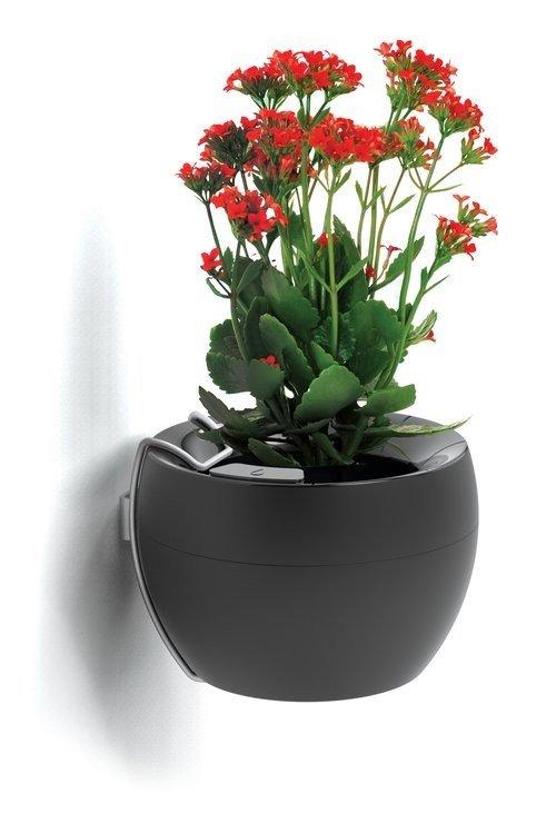 suporte vaso botanika