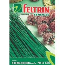 semente cebolinha verde feltrin