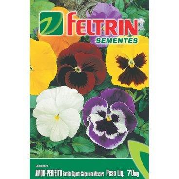 semente amor perfeito feltrin