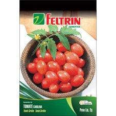 semente tomate carolina feltrin