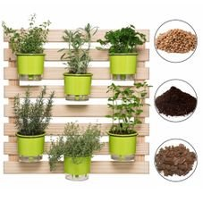 202605 conjunto horta vertical 6 vasos verdes claro 6 suportes pretos substrato argila casca raiz