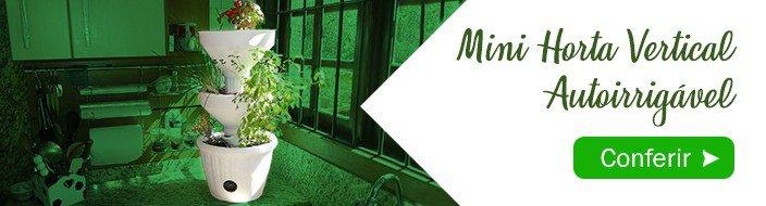 mini horta verde vida