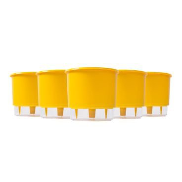 202663 kit 5 vasos auto irrigaveis raiz amarelo