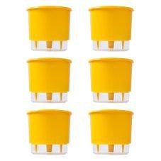 202645 kit 6 vasos auto irrigaveis raiz amarelo