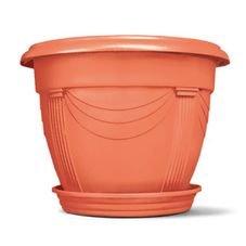 vaso romano nutriplan com prato