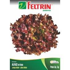 semente alface betania golden feltrin 5g