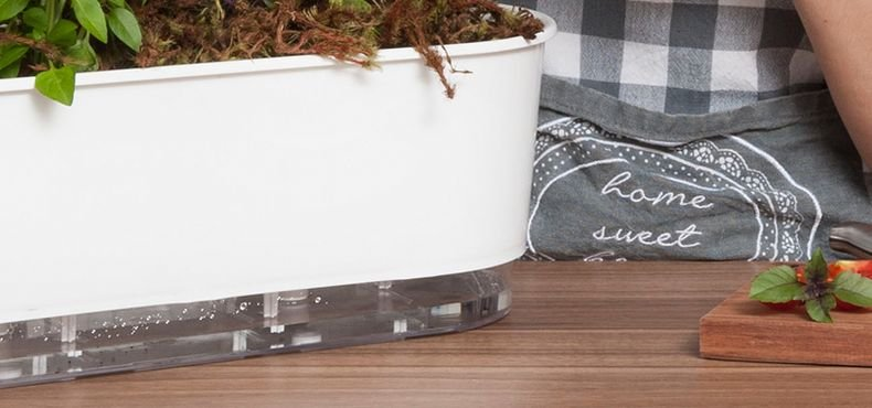 jardineira 40 cm raiz branca tempero