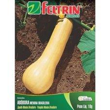 semente abobora menina brasileira 10g golden feltrin