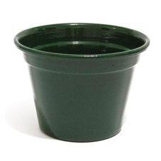 cachepot violeta verde escuro medio